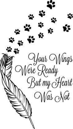 Pet Bereavement 3 3 e1578501527185
