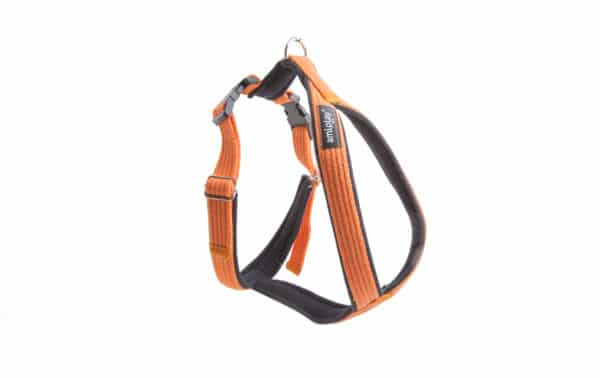 Product 1 AmiPlay Cotton GrandHarness Orange