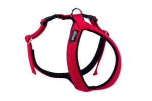 AmiPlay_Cotton_GrandHarness_Red.jpg 3 AmiPlay Cotton GrandHarness Red