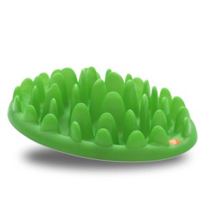 COA_GREEN_Slow_Dog_Feeder.jpg 3 COA GREEN Slow Dog Feeder