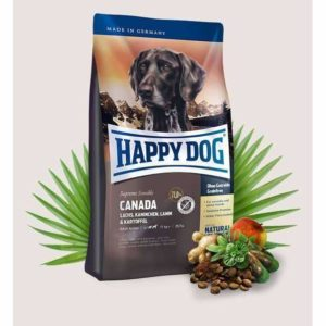 Happy_dog_Canada_b97e677b-b197-4304-8a61-ba20c63f0393_spo.jpg 3 Happy dog Canada b97e677b b197 4304 8a61 ba20c63f0393 spo