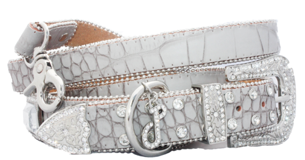Glam Rock Croc Leather Collar And Lead Set 1 IMG 5011 2