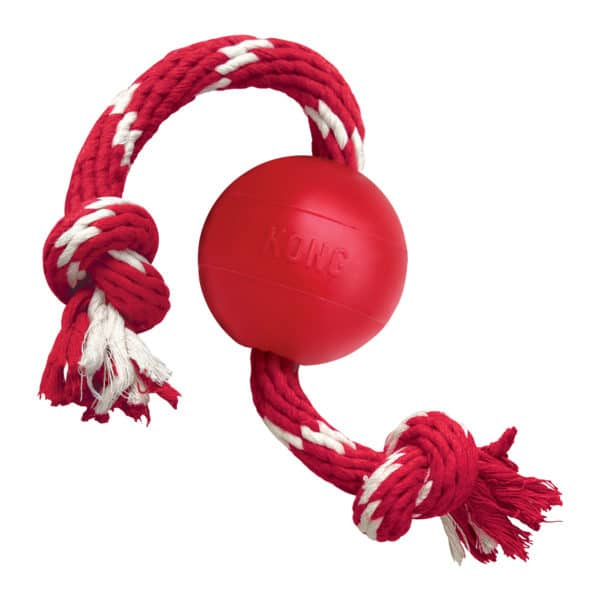 Product 1 KONG KB21 Ball wRope 1 scaled