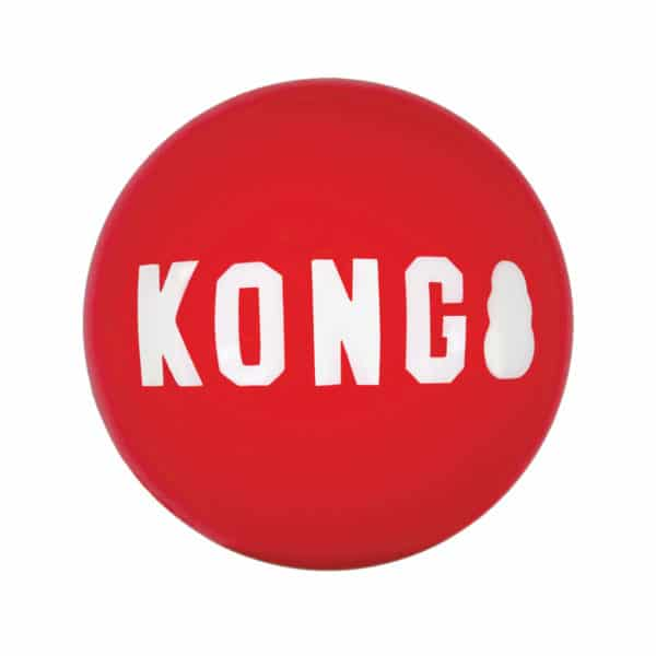 Product 1 Kong SKB2B Signature Ball