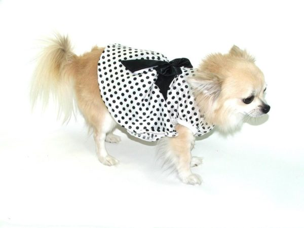 Polka Dot Dress in White and Black 1 Polka20Dress20Black20and20white5Bfullscreen5D