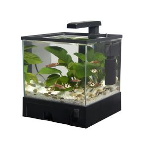 Aquarium Accessory